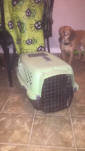 Small pet taxi dog kennel