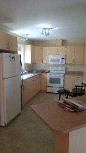 1 BEDROOM/SUBLET:  Avail: Jan. 1 - May 1,  2019