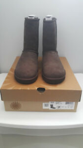 Brand new in box women's UGG classic short chocolate US7