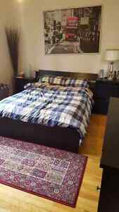 $1300 / 2br or $650/br - Summer Sublet - 4 1/2 - McGill Ghetto