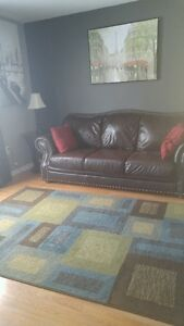 Teal and Brown Area Rug