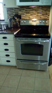Stainless true convection oven