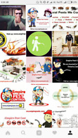 Pest Control Service For Lowest Price