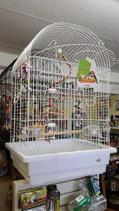 Ziggy's Feathered Friends - Birds, Cages, Supplies London Ontario image 1