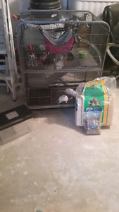 Rats, cage, accessories