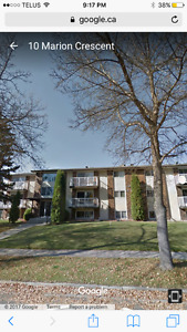 NEWLY RENOVATED 2 BEDROOM SUITE St Albert