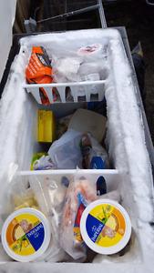 Outside Chest Freezer