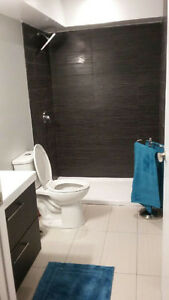 Cozy, open concept, 1 bedroom condo