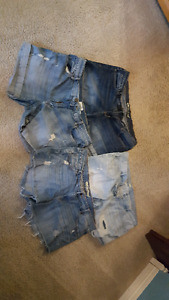 Four pairs of women's size 14/16 Jean shorts
