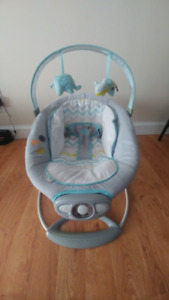 Light Blue Baby Bouncer