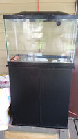 20 gallon fish tank and stand - no leaks 45$
