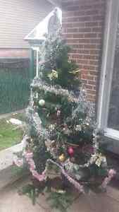 Christmas Trees Arbre de noel