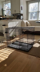 2-door wire dog crate with divider, excellent condition!