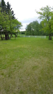 Park Like Property and House On One Acre (Motivated Seller)