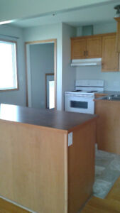 DUPLEX FOR RENT IN GRASSY LAKE