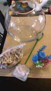 Fish bowl with accessories  London Ontario image 1