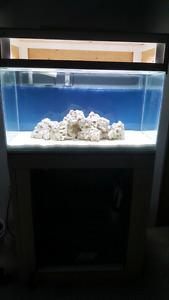 50 gallon aquarium with stand and 24 gallon sump