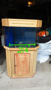 Really Funky fish tank 55 gallon aquarium.