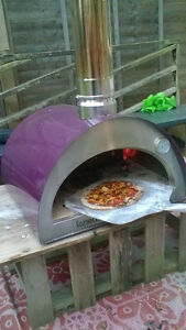 Outdoor Pizza Oven By Wildfire Ovens $1100.00