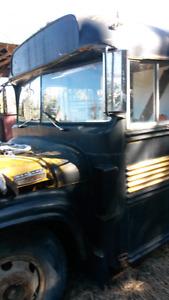 Mercury bluebird bus