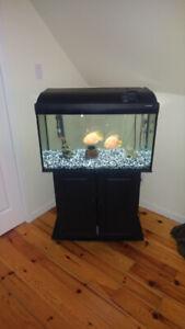 aquarium 32 gallons a vendre