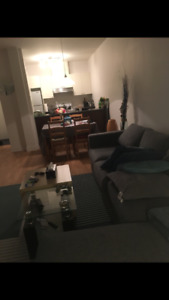 1 bed room apartment ( sublease )