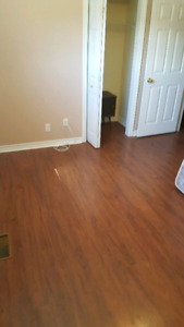 Roommate for large rural home