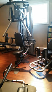 BODY-SOLID G10B BI-ANGULAR GYM WITH INNER/OUTER THIGH ATTACHMENT Windsor Region Ontario image 9