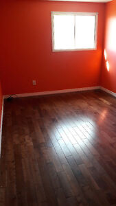 One Bed Room is available
