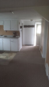 Extremly clean, quiet lofty one bedroom near Soo College