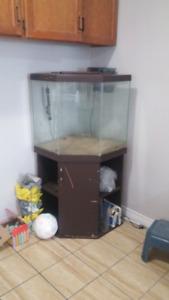45 gallon corner tank, stand $180 OBO