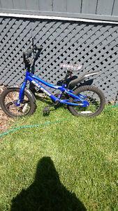 Vélo Raleigh bleu