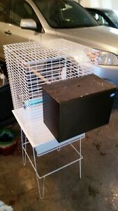 Large bird cage and nest box