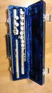 Flute with 2 cases