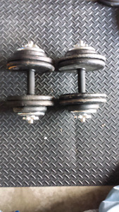 Adjustable dumbell handles with weights