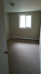 Large renovated 2 bedroom - 170 Berkshire Dr London Ontario image 3