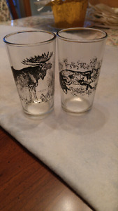 Animal themed glasses
