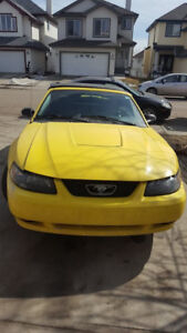 2003 Ford Mustang Coupe (2 door)  $ 4000