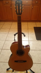 Ibanez Acoustic/Electric Guitar.