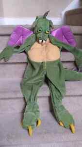 3t dragon costume