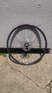 Rim with disc