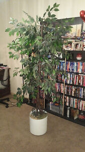 6ft Decorative Indoor Tree