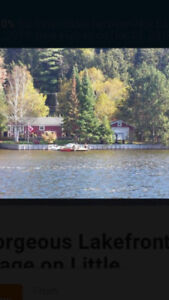 1/2 price  Lake front Cottage  near Haliburton area