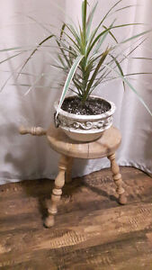 Rustic Milking Stool !