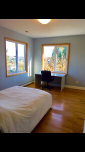 Large furnished bedroom in clean, friendly home!