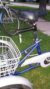 12 inch  genisis youth or adult  trike  Sarnia Sarnia Area image 4