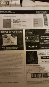 Evanescence Concert Ticket.