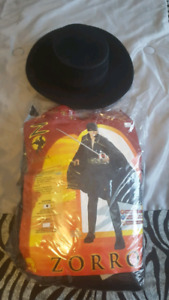 Costume d'halloween de Zorro