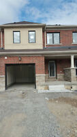 BRAND NEW 3 BEDROOM TOWNHOME FOR RENT - STONEY CREEK MOUNTAIN