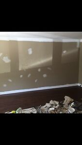 Painter - Painting special Peterborough / Kawartha lakes Peterborough Peterborough Area image 6
